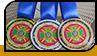 """Медалі """"Чемпіонат ДПСУ"""""""